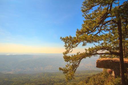 loei: Lomsak Cliff at Phu Kradueng National Park,Loei