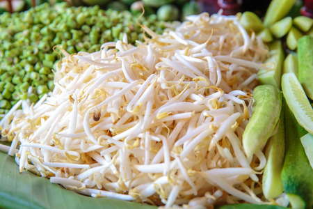 bean sprouts: Bean Sprouts vegetable