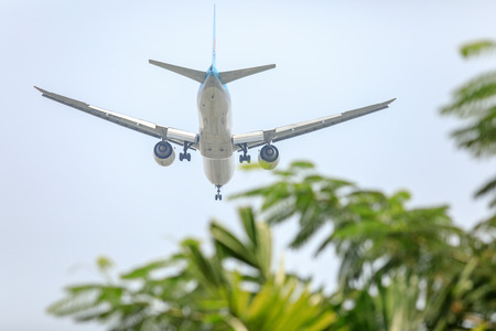unspecified: Unspecified Air Plane of on the sky landing to the Suvanabhumi airport with blurry tree leaf. Stock Photo