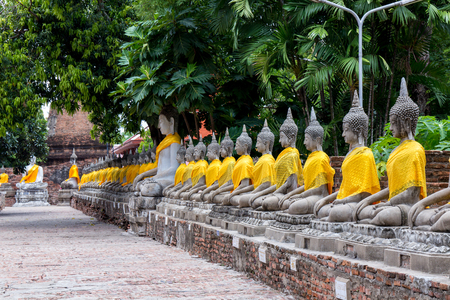 Aligned Buddha statues at Wat Yai Chaimongkol, Ayutthaya, Thailand.