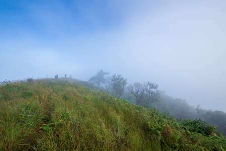 White fog cover the People or traveler walk on the Mountain hill with grass field or white clouds at