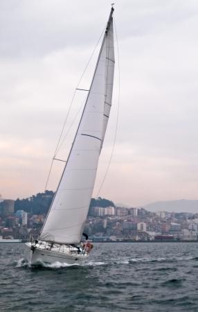 windward: sailing ships on a cloudy day near ground