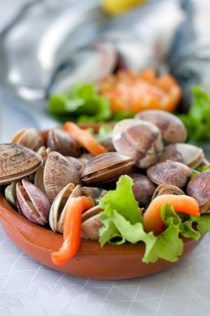 fresh clams over a tray with vegetables