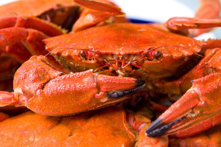 a closeup of a tray with just cooked crabs