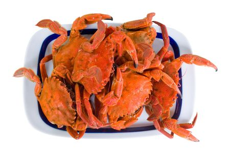 a tray with just cooked red crabs
