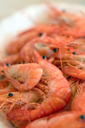 closeup of a tray with red crayfish Stock Photo