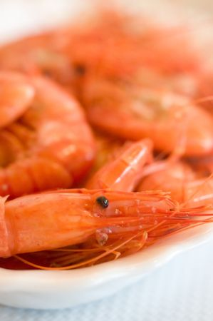 a closeup of a red crayfish head