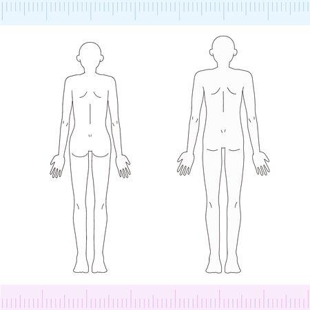 Male/Female Medical Beauty Naked Nude Whole Body Back Illustration