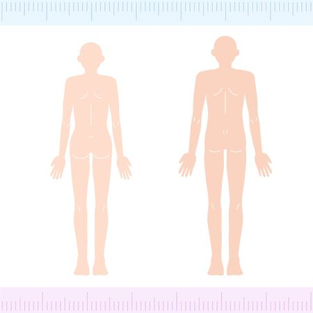 MaleFemale Medical Beauty Naked Nude Whole Body Back