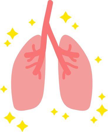 Simple Healthy Lung Illustration internal organs  Digestive