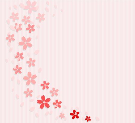 The background of the cherry blossom petals
