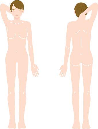 Female Medical Beauty Naked Nude Whole Body Front/Back Illustration