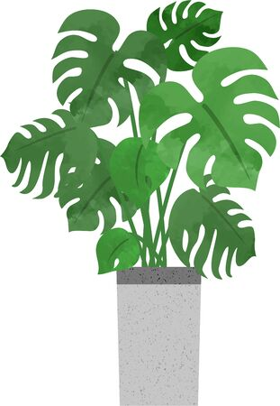 Hand-painted houseplants (Monstera) icons (watercolor style) 写真素材 - 147298944