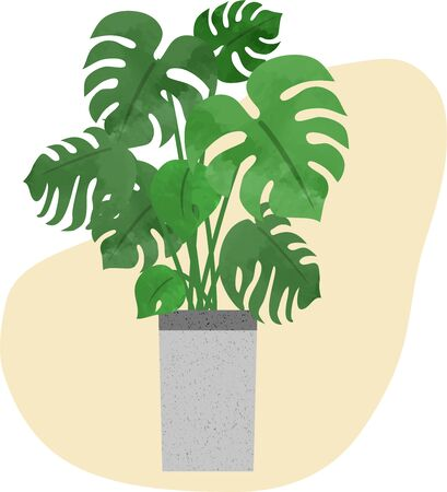 Hand-painted houseplants (Monstera) icons (watercolor style) 写真素材 - 147298945