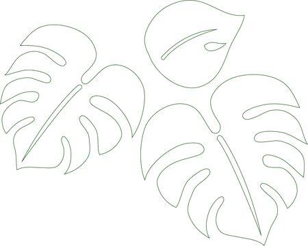Hand-painted houseplants (Monstera) line 写真素材 - 148120913