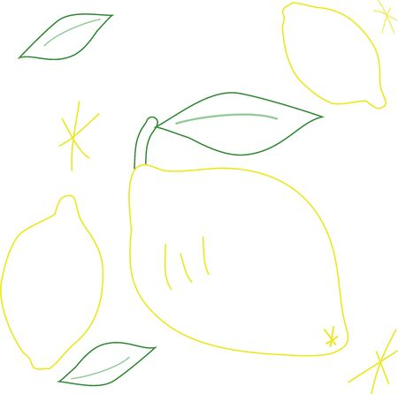 Lemon and leaves drawn with hand-drawn lines