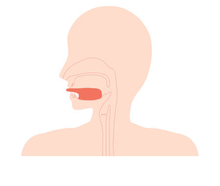 Because there is a tongue belt, it is an illustration of symptoms that the tongue can not stretch too much before.