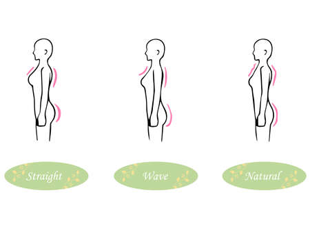 Skeletal Diagnosis 3 Types Body Shape Illustrations Seen From The Side (Straight Wave Natural)