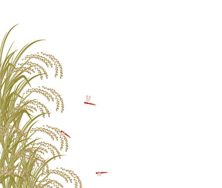 Illustration of rice and red dragonfly in a deflection