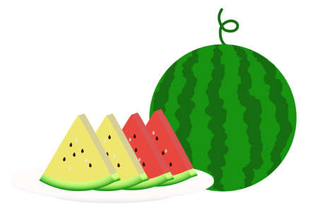 Illustration of watermelon (red and yellow)