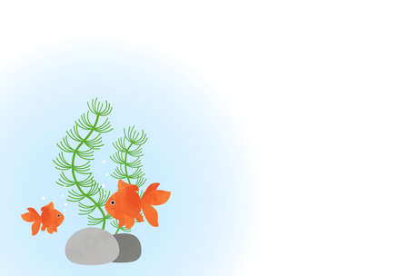 Summer image background of goldfish and water plants  イラスト・ベクター素材