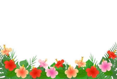Hibiscus Illustration Frame  イラスト・ベクター素材