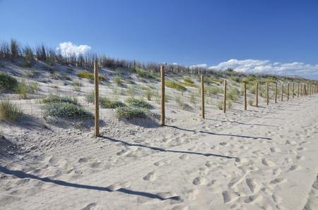 shure: enclosed dunes at beach Stock Photo
