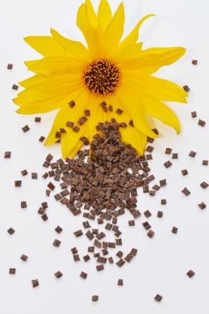 biodegradable material: renewable polymer resin