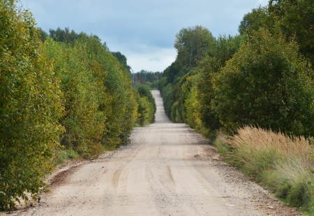 rural road in Latvia, Baltic photo