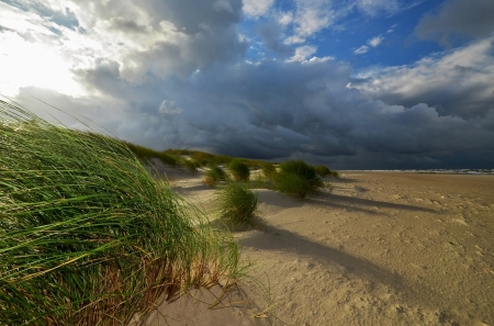 baltic sea: amber coast of Latvia