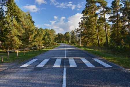 paso de peatones: paso de peatones en el camino rural en el Báltico