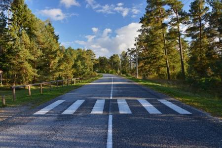 zebrapad op landelijke weg in de Baltische