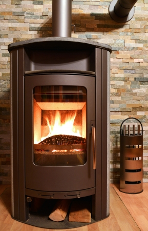 stove: Wood burning stove in front of stonwall