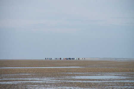 group falling on risky mudflat hiking tour in northern sea