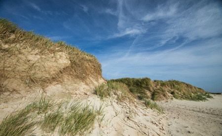 nen: dunes on a stormy sunny day at the coast of North Sea