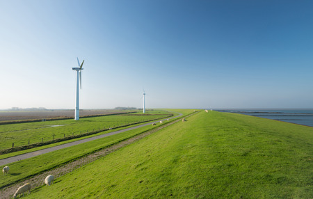 dike: Wind turbine from power plant at coast line in northern with dike and sheeps, Germany