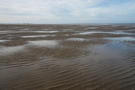 mudflat in North Sea