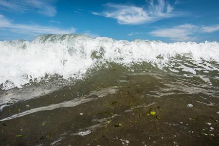 breakers: powerful ocean breakers with algae at Atlantic ocean Stock Photo