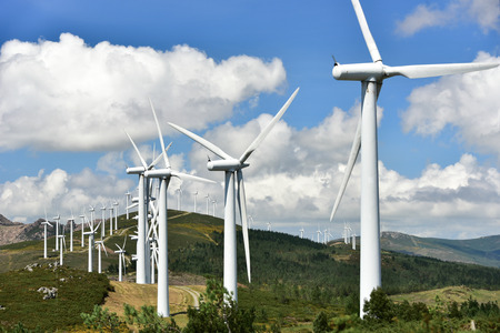 windmill-powered plant 스톡 콘텐츠