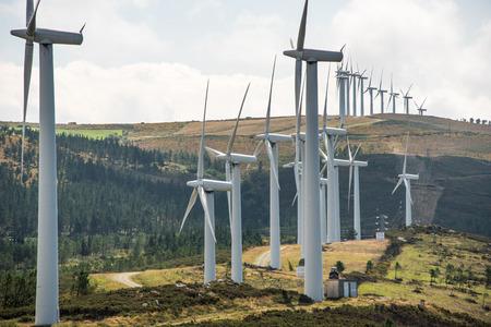 turbina: planta de molino de viento accionado