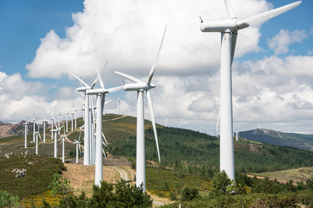 powered: windmill powered plant on Hilltop