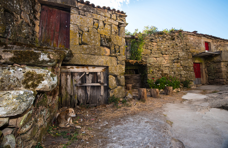 characteristic: aged characteristic farm house in little village in Galicia, northern Spain, with dog at high noon.
