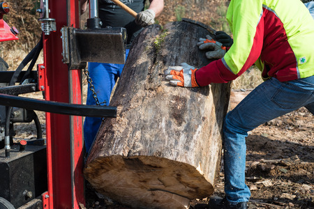 effectively: Lumberjacks with hydraulic wood splitter at tractor machine in forest
