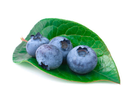 blue berries with leaf on the white background