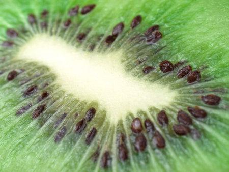close up of fresh kiwi on white background
