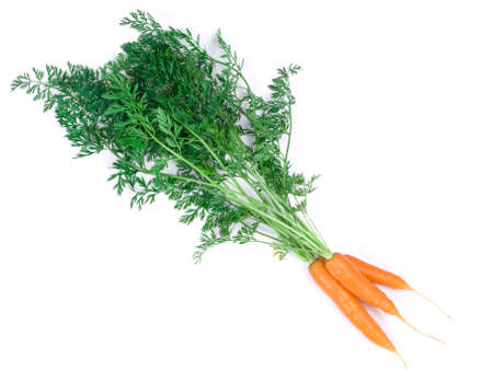 shot of fresh carrots on the white background