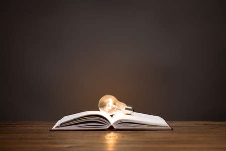 Incandescent bulb on open book. On top is empty space to put text or something else. This file is cleaned and retouched.