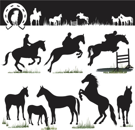 bridle: Horse Silhouettes - Vector. Easy Change Colors... Enjoy