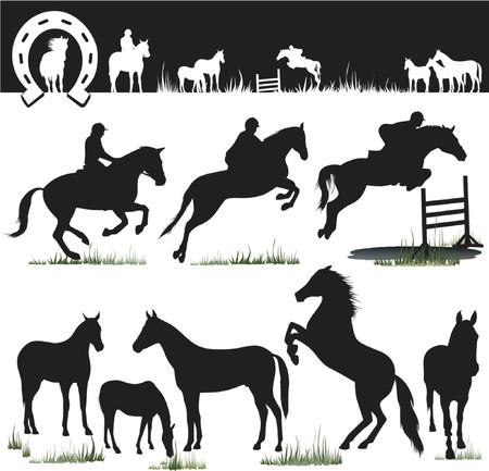 hooves: Silhouettes cavallo - Vector. Facile cambiare i colori ... Godetevi