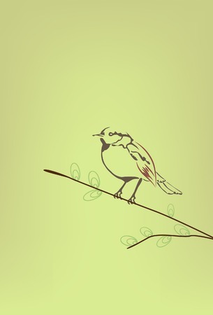 perched: Inked bird perched on a branch.Vector illustration. Illustration